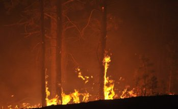 Black Forest Fire Near Colorado Springs Continues To Burn